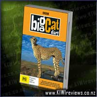 Product image for Big Cat Diary